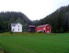 farm house palampur Himachal Homeland